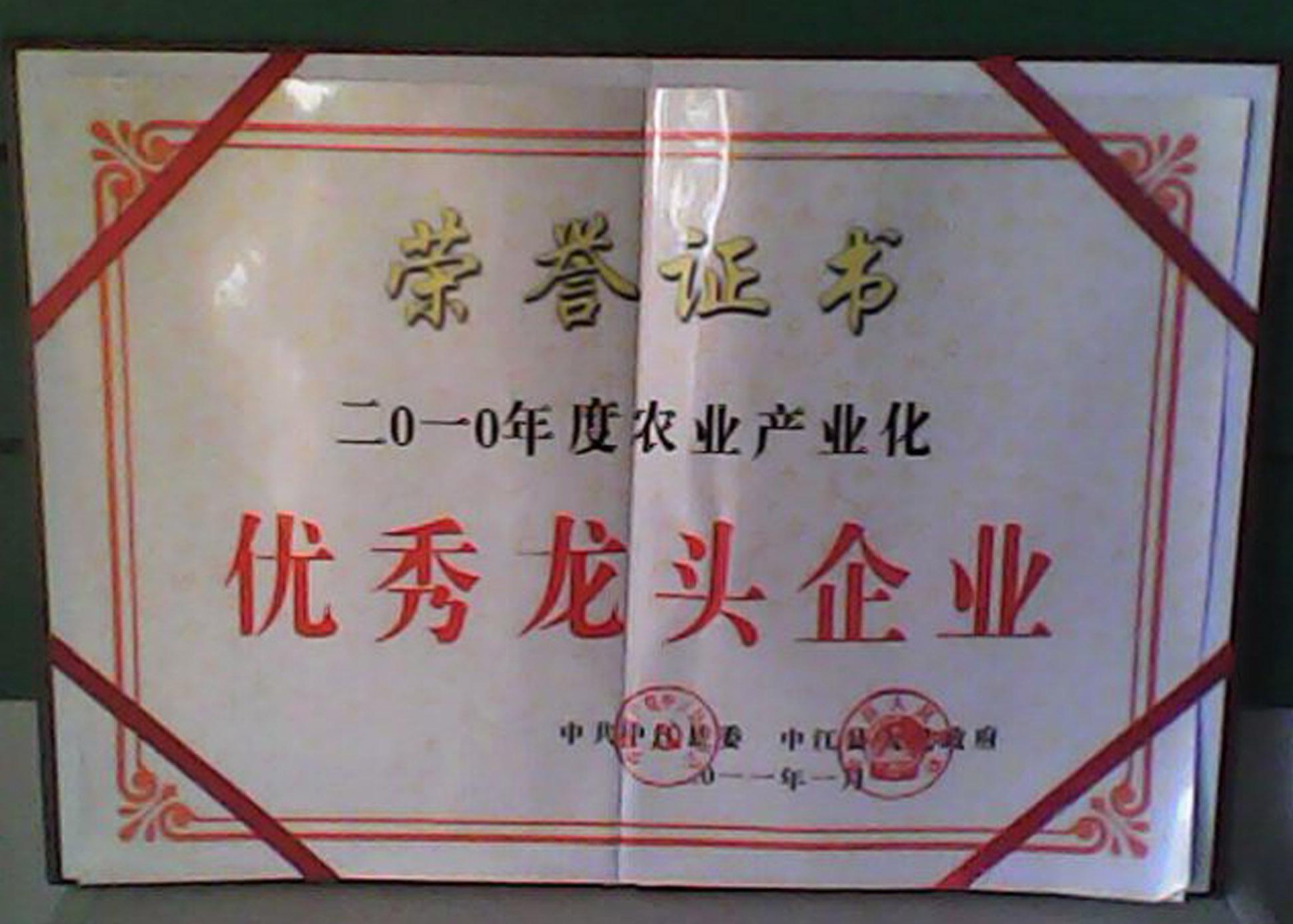 县优秀2011