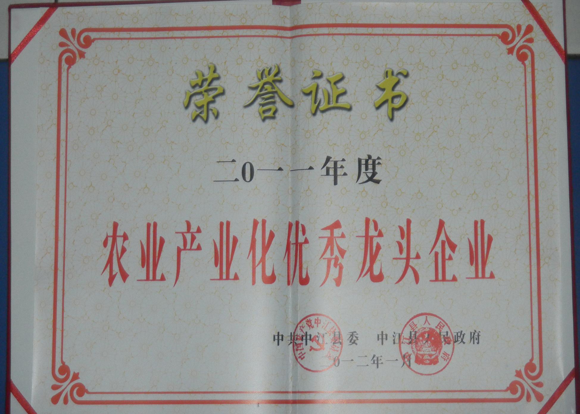 县优秀2012