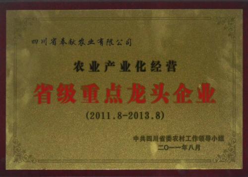省重点2011