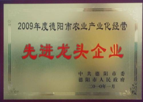 市先进2010