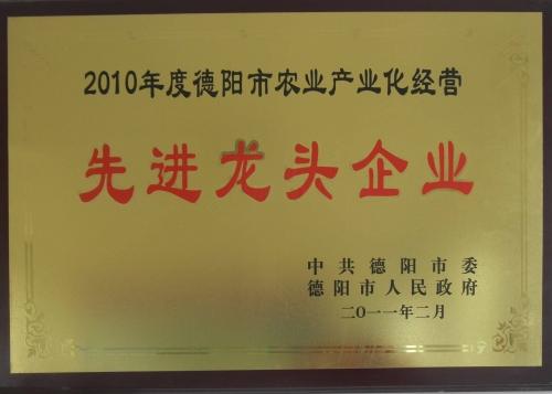 市先进2011
