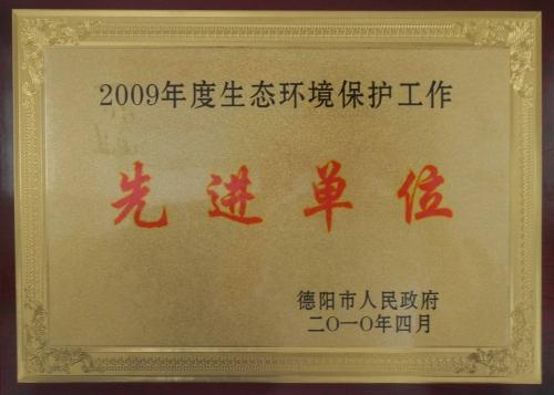 县环保先进2010