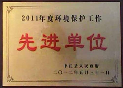 县环保先进2012