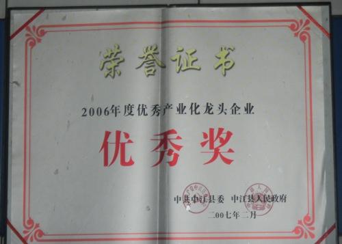 县优秀2007