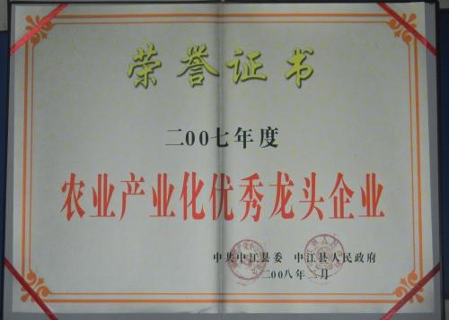 县优秀2008