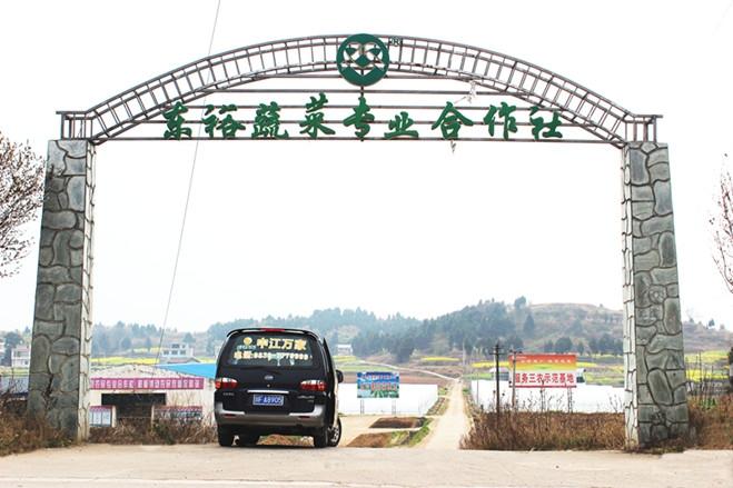 中江县东裕蔬菜专业合作社